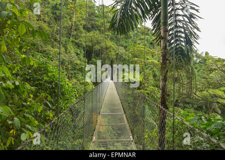 Suspended bridge at natural rainforest park, Costa Rica - Stock Photo