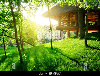 Gazebo among the green trees in sunny day - Stock Photo