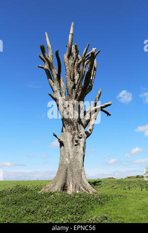 An English Rural Landscape with Lone dead tree against a blue sky - Stock Photo