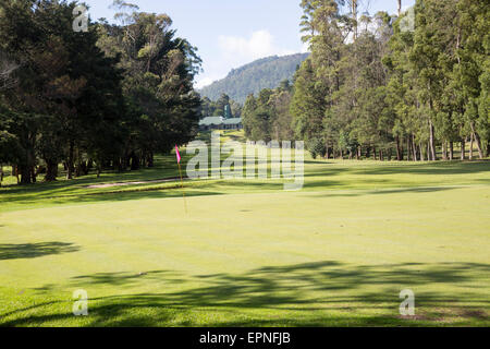 Golf course and clubhouse, Nuwara Eliya, Central Province, Sri Lanka - Stock Photo