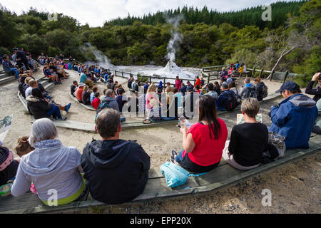 Tourists waiting for the daily performance of Lady Knox Geyser in the Wai O Tapu thermal wonderland  near Rotorua - Stock Photo