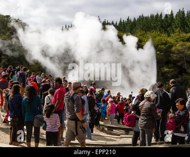 Crowds of tourists at Lady Knox Geyser in the Wai O Tapu thermal wonderland  near Rotorua in New Zealand's North - Stock Photo