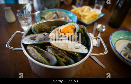 A pot of green lipped mussels in a New Zealand restaurant - Stock Photo