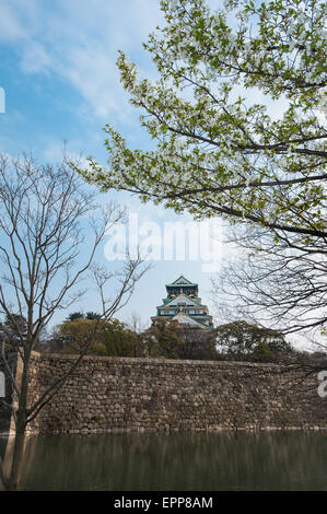 The Osaka Castle of Japan during the cherry blossom season in spring - Stock Photo