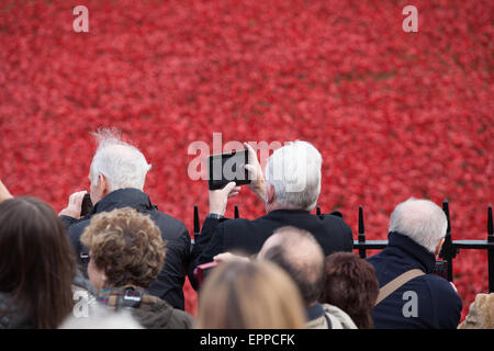 Members of the pubic viewing the Tower of London poppies installation on 6th November 2014 - Stock Photo