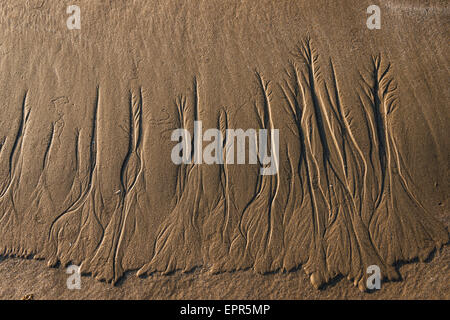 Pattern in the sand at Nicholaston Beach, Oxwich Bay, Gower, Wales - Stock Photo