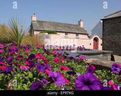 Cottage opposite the harbour in Aberaeron - Stock Photo