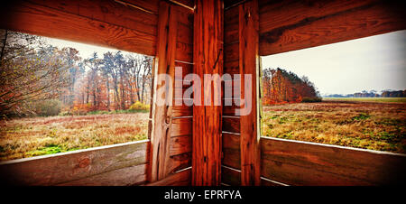 Panoramic view of interior of hunting tower in autumn season. Stock Photo