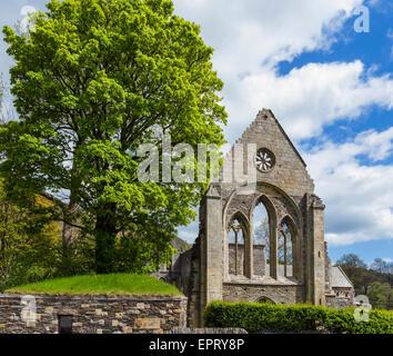 Valle Crucis Abbey, near Llangollen, Denbighshire, Wales, UK - Stock Photo