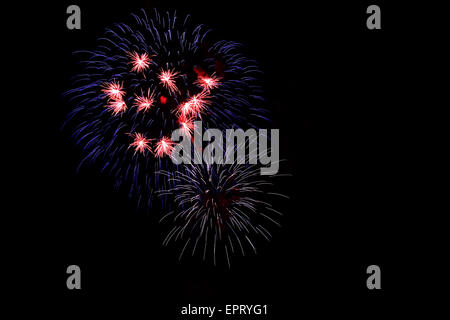 Firework displays in red, blue and white colors on dark background, great symbol for national colors of USA and - Stock Photo