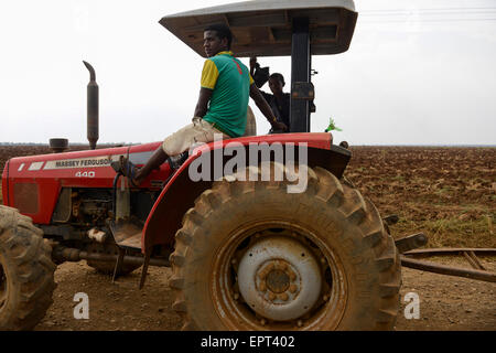 ETHIOPIA Gambela, Abobo, farm land of company Saudi Star Agricultural Development owned by Mohamed al-Amoudi / AETHIOPIEN - Stock Photo
