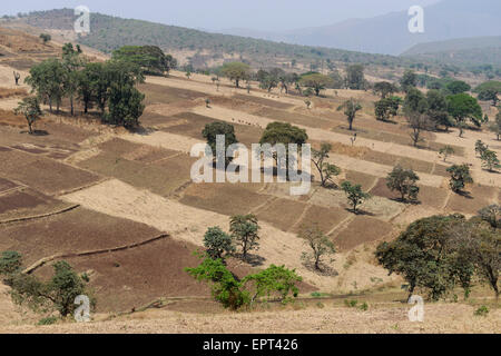 ETHIOPIA Gambela, small scale farming in highland / AETHIOPIEN Gambela, kleinbaeuerliche Landwirtschaft im Hochland - Stock Photo
