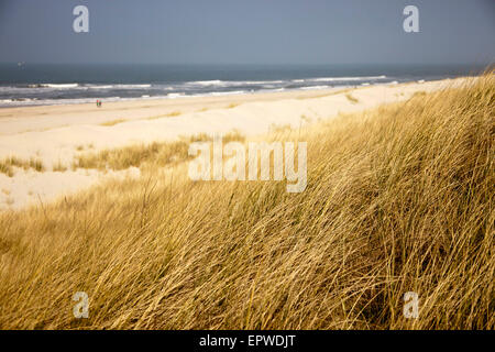 dunes and the main beach, East Frisian Island Spiekeroog, Lower Saxony, Germany - Stock Photo