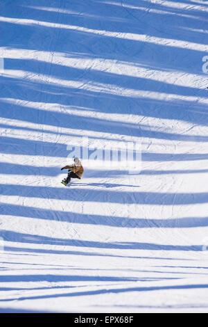 USA, Montana, Whitefish, Man snowboarding across shadows - Stock Photo