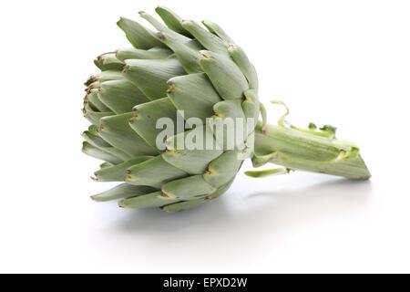 green globe artichoke isolated on white background - Stock Photo