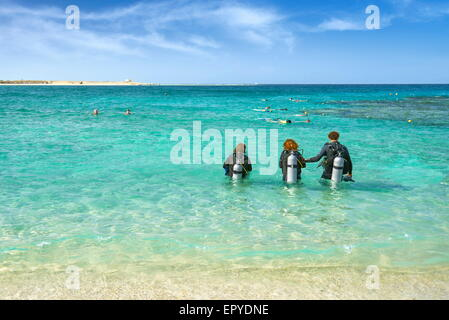 Marsa Alam, divers in Abu Dabbab Bay,  Red Sea, Egypt - Stock Photo