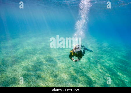 Single scuba diving underwater, Marsa Alam, Red Sea, Egypt - Stock Photo