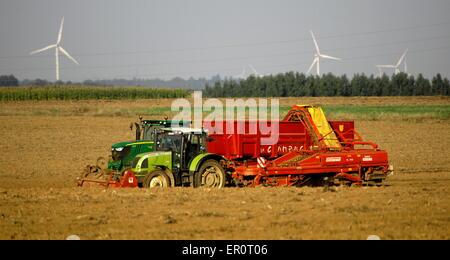 AJAXNETPHOTO. PICARDY, FRANCE. - AGRICULTURE - HARVESTING POTATOES. PHOTO:JONATHAN EASTLAND/AJAX REF:D132309_3575 - Stock Photo