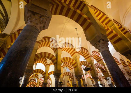 Cordoba, Cordoba Province, Andalusia, southern Spain.  Interior of La Mezquita, or Great Mosque.  The Historical - Stock Photo