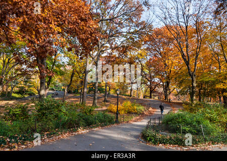 New York City, USA - November 14, 2011: People are resting in Central Park during a sunny day in autumn at November - Stock Photo
