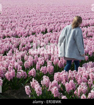 Girl walking through a field of pink hyacinth flowers - Stock Photo