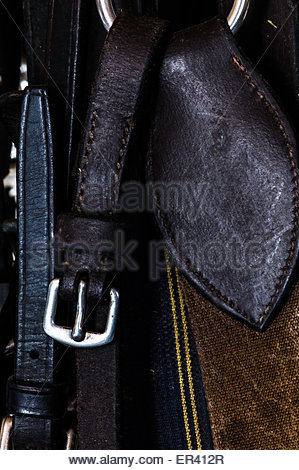 Bridles and Bits hang in the tack room of an eventing yard. - Stock Photo
