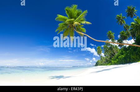 Tropical beach destination. - Stock Photo