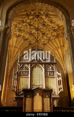 Church architecture. The ornate Victorian organ pipes, and part of the magnificent historic vaulted ceiling of Sherborne Abbey in Dorset, England, UK.