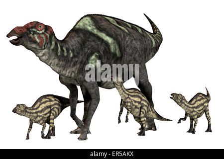 Maiasaura was a duck-billed herbivorous dinosaur that lived in Montana, USA in the Cretaceous Era. - Stock Photo