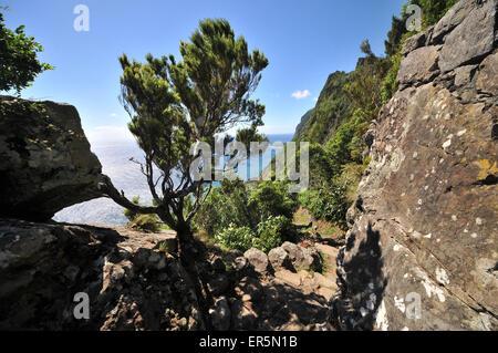 Hiking trail at Faja de Lopo Vaz, Lajes das Flores, South coast, Island of Flores, Azores, Portugal - Stock Photo