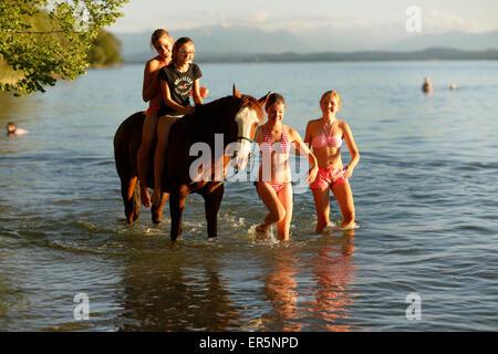 Four girls with a horse in lake Starnberg, Ammerland, Munsing, Upper Bavaria, Germany - Stock Photo