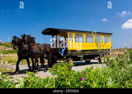 Horse and cart, Langeoog Island, North Sea, East Frisian Islands, East Frisia, Lower Saxony, Germany, Europe - Stock Photo
