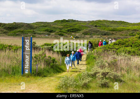 Flinthoern nature trail, Dunes, Langeoog Island, North Sea, National Park, Unesco World Heritage Site, East Frisian - Stock Photo