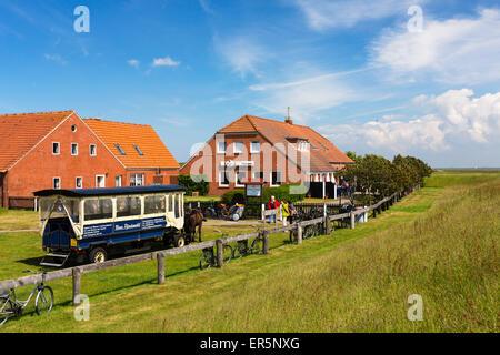 Restaurant Meierei with horse and cart, Langeoog Island, North Sea, East Frisian Islands, East Frisia, Lower Saxony, - Stock Photo