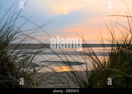 beach at dusk, beach, Langeoog Island, North Sea, East Frisian Islands, East Frisia, Lower Saxony, Germany, Europe - Stock Photo