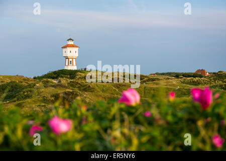 Water tower, landmark, Langeoog Island, North Sea, East Frisian Islands, East Frisia, Lower Saxony, Germany, Europe - Stock Photo