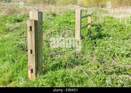 Old broken fence in an overgrown field with a patch of common stinging nettles, (Urtica dioica), England, UK - Stock Photo