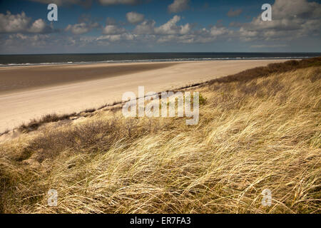 dune grass  and the main beach, East Frisian Island Spiekeroog, Lower Saxony, Germany - Stock Photo