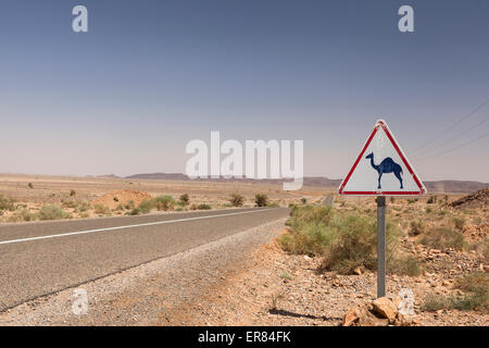 Camel Crossing Sign on a paved road in Morocco, North Africa - Stock Photo