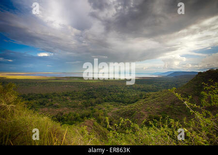 Safari at Lake Manyara National Park, Tanzania - Stock Photo