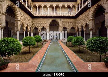 Reflecting pool in the Courtyard of the Maidens at Alcazar palace Seville Andalusia Spain - Stock Photo