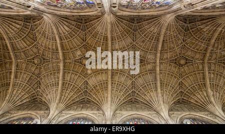 UK, England, Cambridge.  King's College Chapel, Ceiling Vaulting. - Stock Photo