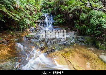 Tiny waterfall in Blue Mountains, Australia - Stock Photo