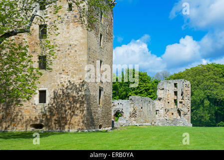 Spynie Palace, near Elgin, Moray, Scotland UK - Stock Photo