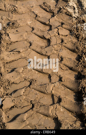 Tractor tyre treadmarks in soil on headland in arable field, UK. - Stock Photo