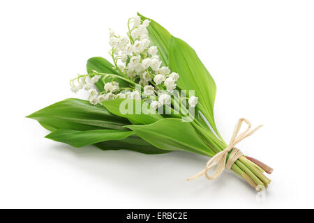 lily of the valley posy isolated on white background - Stock Photo