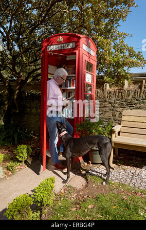 Man with dog reads book in the Thurlestone book exchange, located in an old telephone box in the village of Thurlestone, - Stock Photo