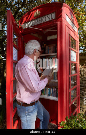 A man reads book in the Thurlestone book exchange, located in an old telephone box in the village of Thurlestone, - Stock Photo