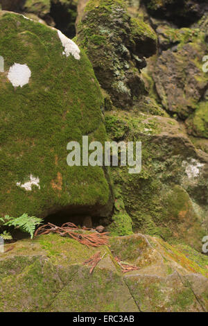 Moss covered rocks in the gardens of Narita Jinja (Shrine), a large Shinto shrine in the heart of Narita CIty, Japan - Stock Photo