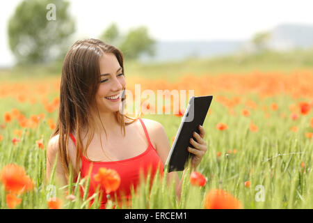 Woman reading an ebook or tablet in the middle of a field with red poppy flowers in summer - Stock Photo